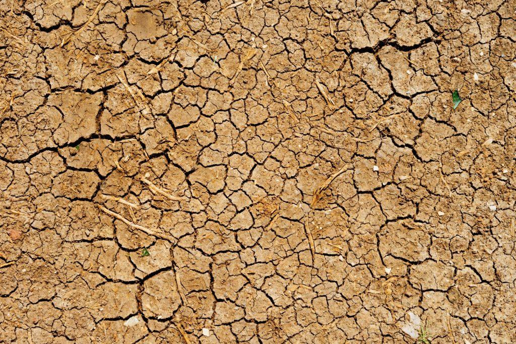 terre aride sécheresse