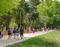 Promenade sur la rive gauche de l'Allier à Bellerive